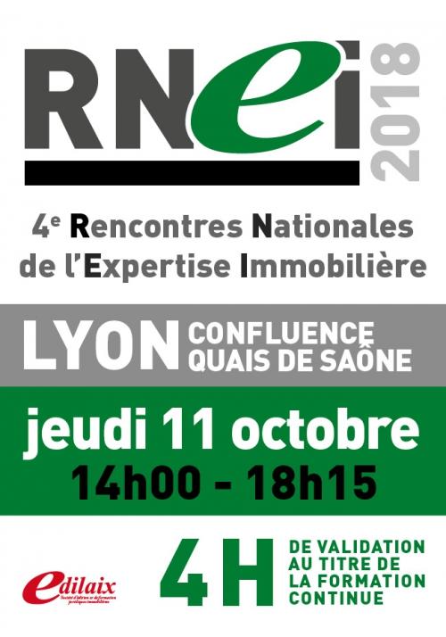 RNEI | Jeudi 11 octobre 2018 - Après-midi