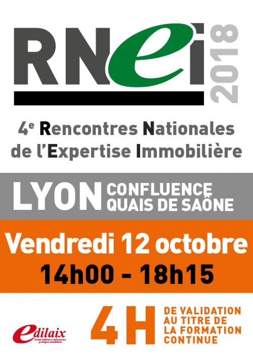 RNEI -Vendredi 12 octobre 2018 - Après-midi