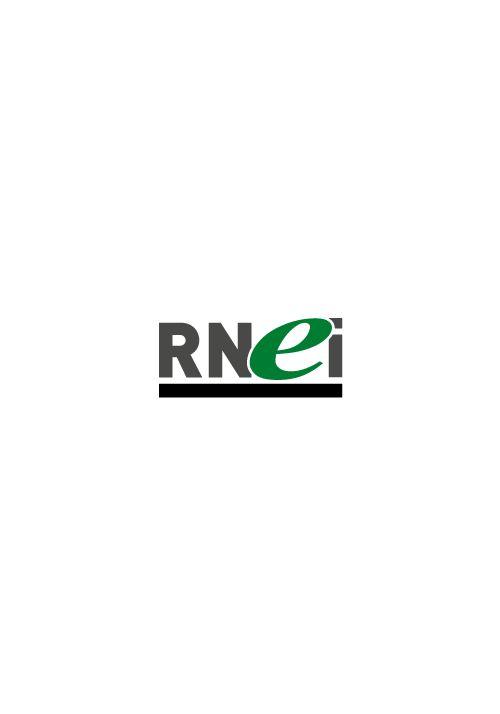 RNEI2020 - 12 ateliers